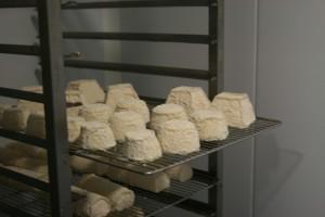 fromage affiné derchez