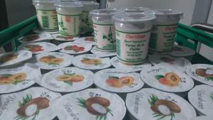 ferme smets yaourts